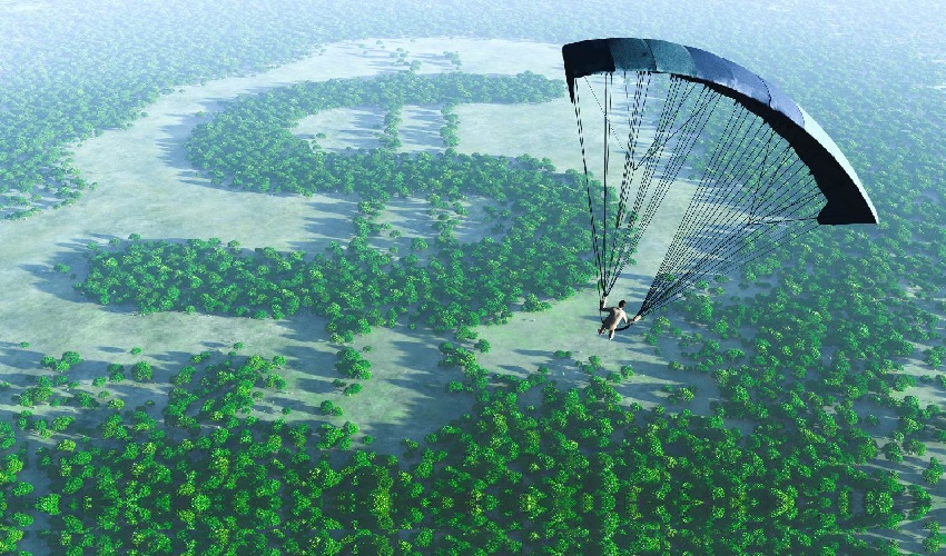 parachutist navigating today's plan fee environment to land in a forest of success